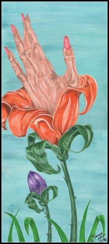 Lady Fingers Plant