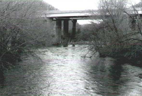 Bridge of Calm Waters