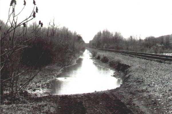 Puddle Along Railroad Tracks