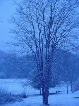 Snow in Blue